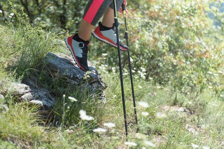 Woman hiking in the mountains, adventure and exercise. Nordic walking legs and poles in summer nature. Active people outdoor