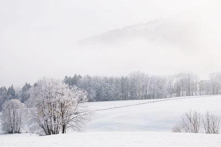 Snowy landscape in Switzerland, near Appenzel