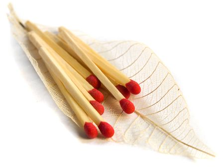 Close up of red matches on a feather photo