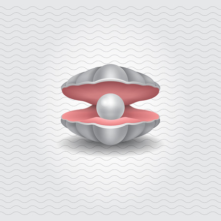 Shell with a pearl, realistic vector object. Illustration