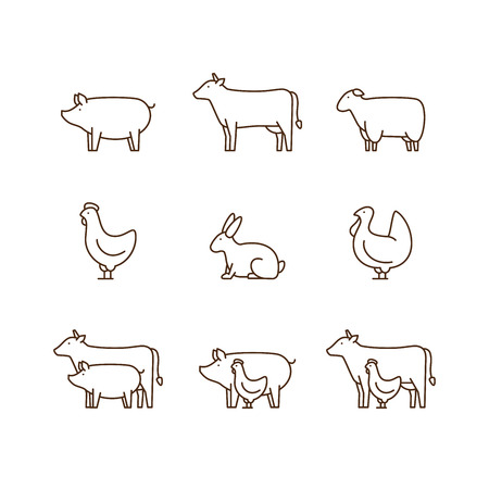 Pig, cow, lamb, chicken, turkey, rabbit.