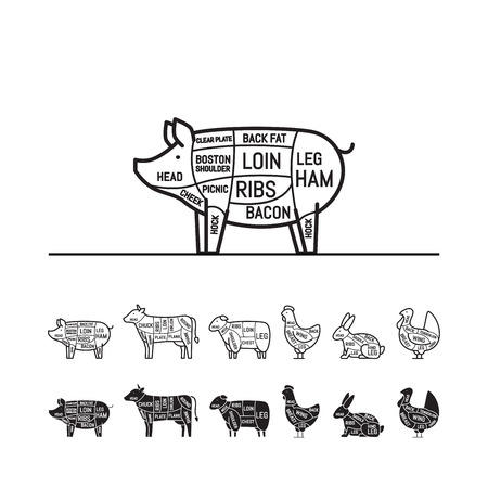 Diagrams for butcher shop - pig. Meat cuts. Animal silhouette, pig, cow, lamb, chicken, turkey, rabbit. Vector illustration. Imagens - 112127122