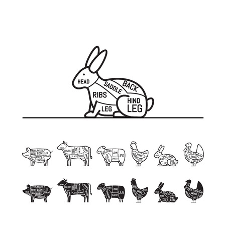 Diagrams for butcher shop - rabbit. Meat cuts. Animal silhouette, pig, cow, lamb, chicken, turkey, rabbit. Vector illustration. Çizim
