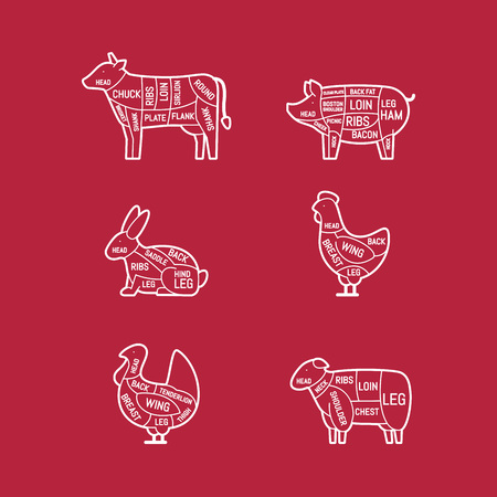 Diagrams for butcher shop. Meat cuts. Animal silhouette, pig, cow, lamb, chicken, turkey, rabbit. Vector illustration. Çizim