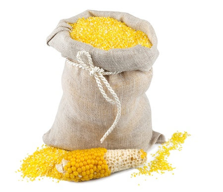 Macro view of maize flour in flax sack with corncob isolated on white background