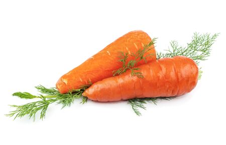 Carrots with green dill isolated on white background
