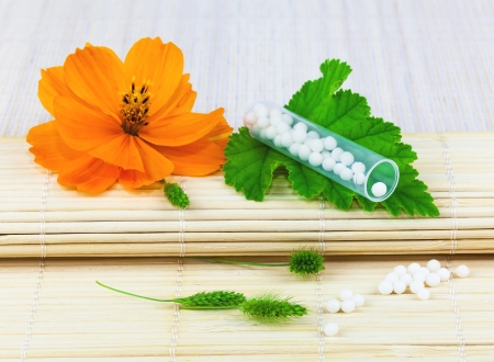 longevity drugs: Homeopathic medication on the leaf with flower on the mat