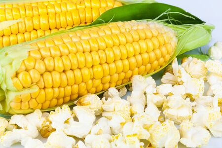 Macro view of maize and popcorn with leaves