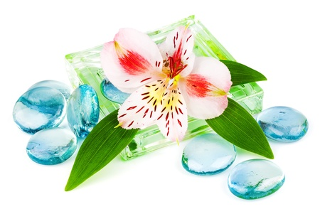 Clarity spa concept with flower and green leaves isolated on white background Stock Photo