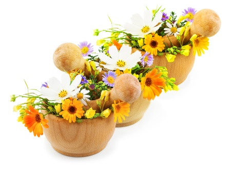 Fresh flowers in wooden mortars isolated on white background