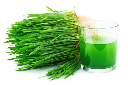 Wheatgrass juice with sprouted wheat isolated on white Stock Photo