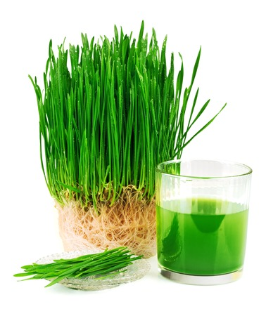 Wheatgrass juice with sprouted wheat on the plate isolated on white background Stock Photo