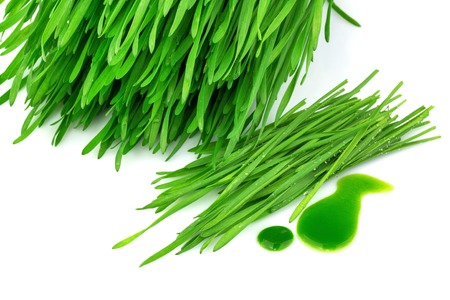 sprouted: Sprouted wheat and wheatgrass juice isolated on white background