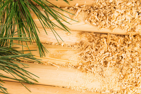 warming therapy: Macro view of wooden sawdust, logs and green pine branches
