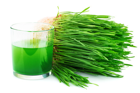 sprouted: Wheatgrass juice with sprouted wheat isolated on white background