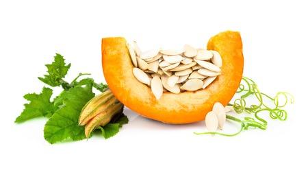 Pumpkin with pumpkin seeds isolated on white background Reklamní fotografie - 34993288