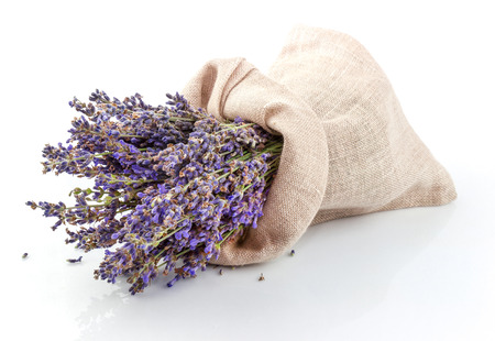 lavender: Dried lavender in a sack isolated on white background