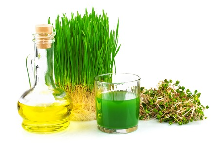 Wheatgrass juice with sprouted wheat and wheat germ oil isolated on white background Reklamní fotografie - 40408816