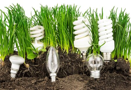 economise: Macro view of lightbulbs, energy-saving lamp, grass and earth isolated on white background