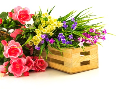 Flowers in wooden basket isolated on white background