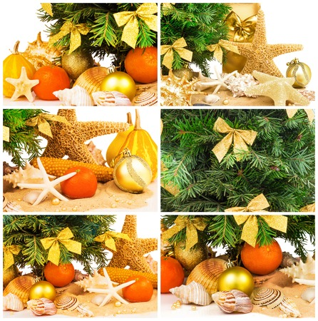 fir twig: Macro view of Christmas concept with fir twig, tangerines, shells on sand, set Stock Photo