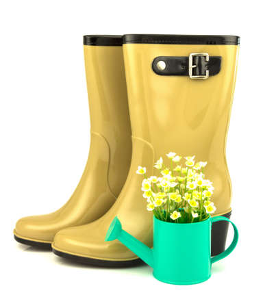 welly: Rubber boots with spring flowers in the watering can isolated on white background