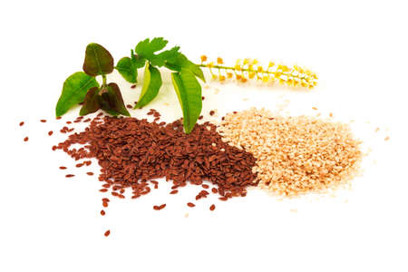 Heap of seasoning sesame and flax seeds with flower and green leaves isolated on white background Reklamní fotografie