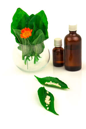 Green leaves and flower marigold in glass bowl, bottles and homeopathic globules. Homeopathy medicine. Nettle healing herbs, alternative medicinal concept. Isolated on white background.