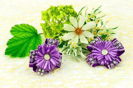 Barrette with elastic and violet ribbon, natural flowers chamomile and green leaf isolated on white background.