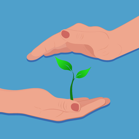 green plant growing in hand, vector illustration
