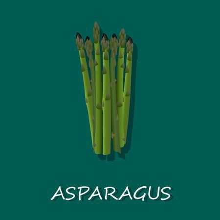 asparagus: Asparagus Spears Illustration