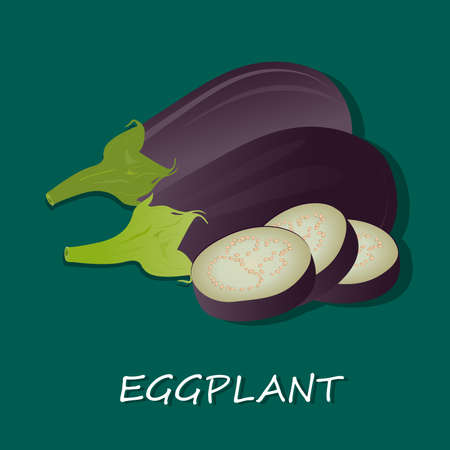 Vectordieillustratie van aubergine op witte achtergrond wordt geïsoleerd