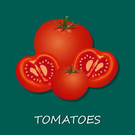 新鮮なトマト、白い背景で隔離のベクトル イラスト