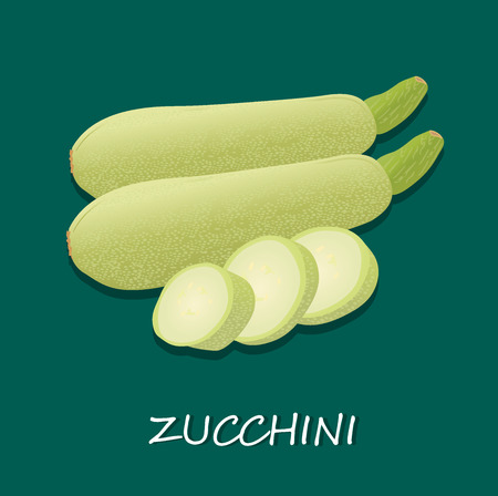 zucchini: zucchini, vector
