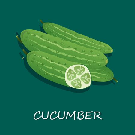 ripe: ripe cucumber Illustration