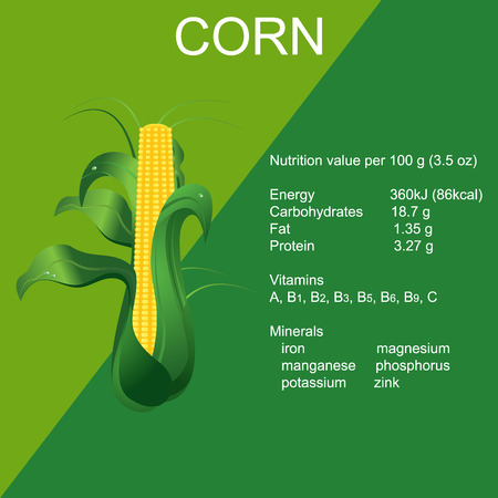 corn on the cob: Ripe, corn, cob, vector illustration in flat design for web sites Illustration