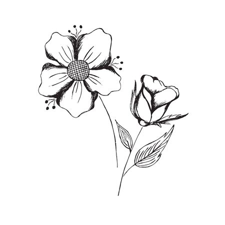 hand, draw, sketch, flowers, vector, illustration, isolated on white background Иллюстрация