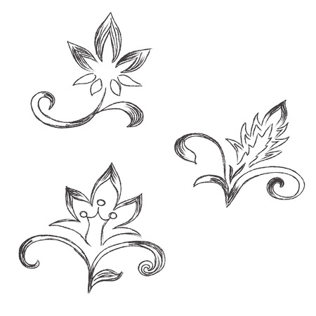 Sketch, flowers, decor, ornament, vector, illustration