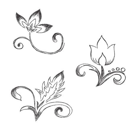 Sketch, flowers, decor, ornament, vector, illustration