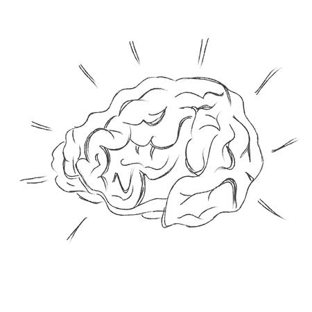 brainy: Human, brain, sketch, vector