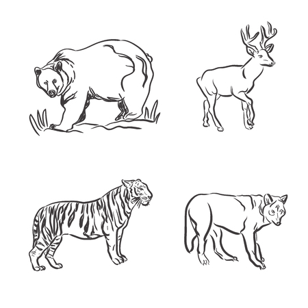 set of wild animals in sketch style, vector illustration