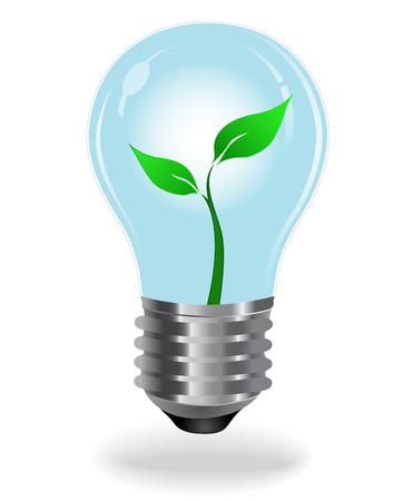 green light bulb: Green, light, bulb
