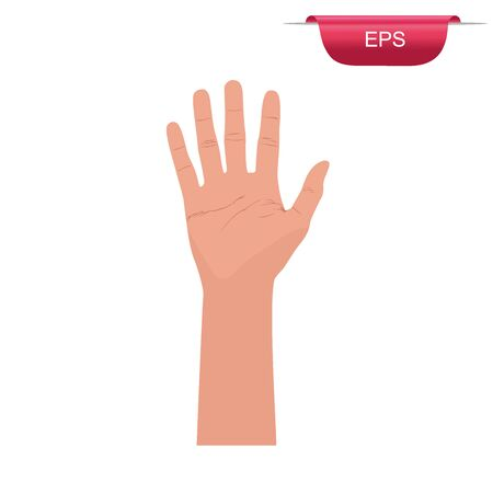 hand, fingers up, vector illustration