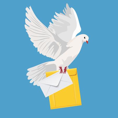 postal dove, pigeon, vector illustration