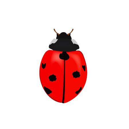 lady bug Ilustracja