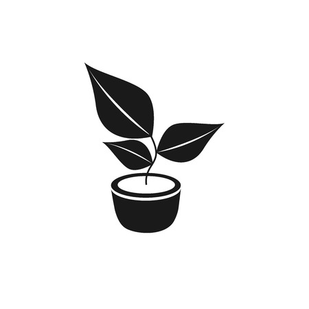Plant icon, vector on a white background.