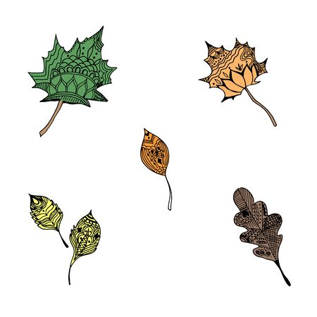 Leaves in sketch style, vector illustration  イラスト・ベクター素材
