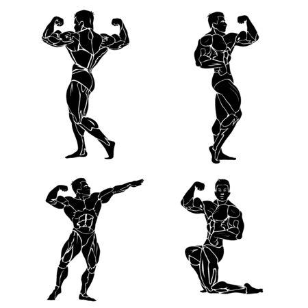 Bodybuilding, fitness and wellness theme, vector illustration Illustration
