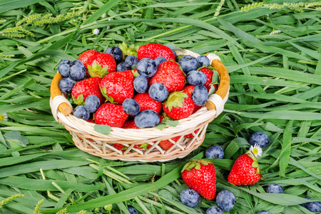 generosa: Ripe strawberries and blueberries in a wicker basket on the grass. The concept of a generous summer harvest of berries. Close-up. Foto de archivo