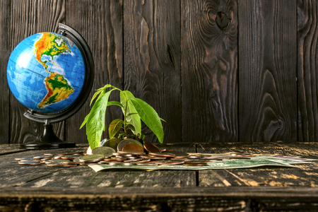 Sprout  rises from a pile of American coins and banknotes up. And the globe from the side. The concept of growth of american  money in investment and business on the globe. Financial metaphor. On a dark wooden background. Stock Photo